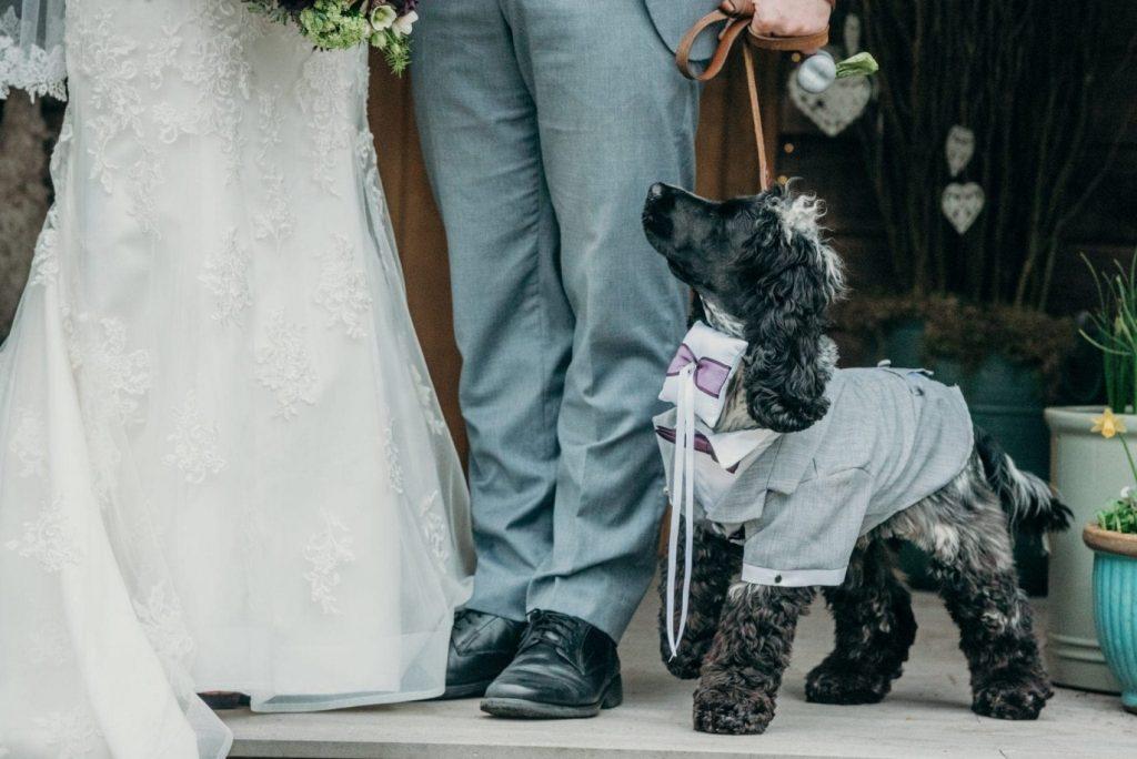 real elopement wedding catherine & daniel