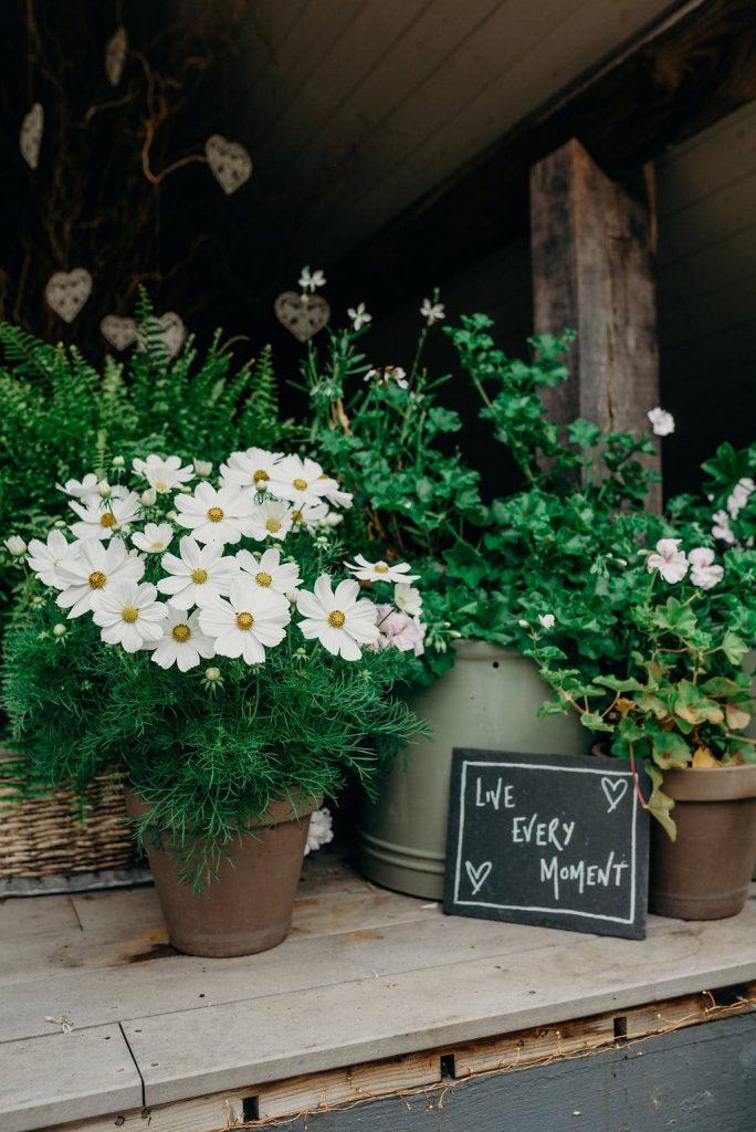 part 2 recap summer elopements ever after blog post the venue