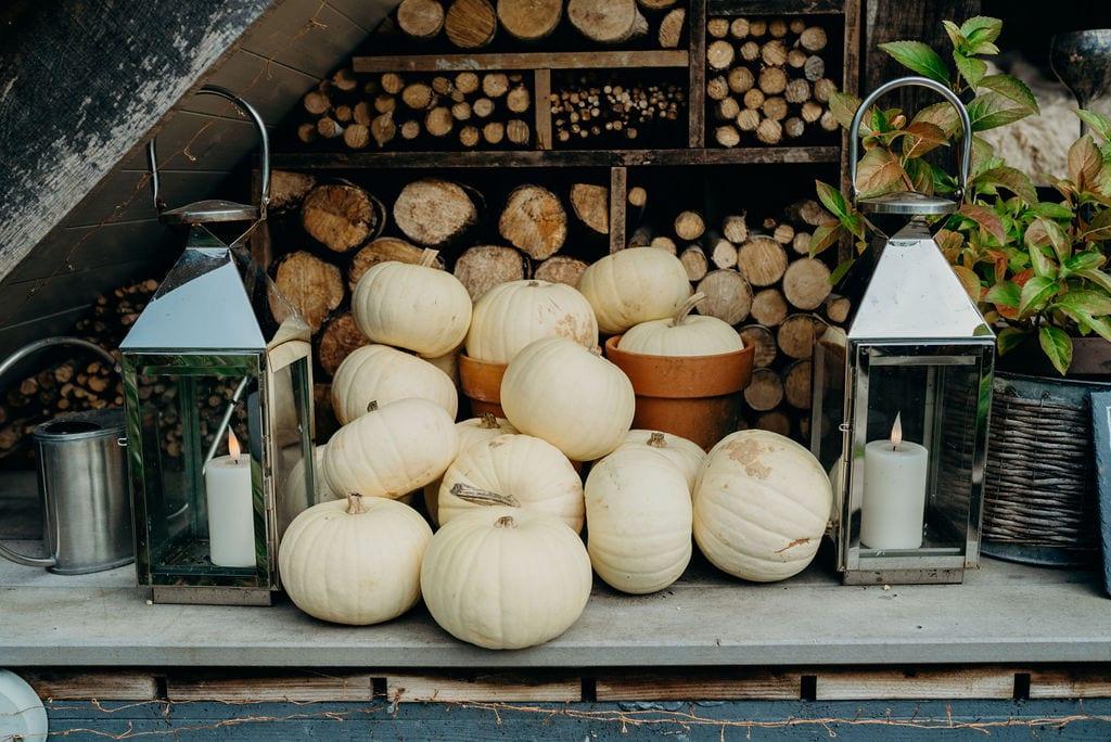 pumpkin detail shot