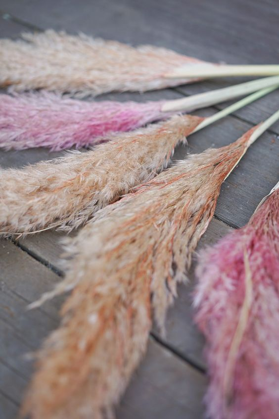 Dyed Pampas grass, colourful, pink pampas, wedding, trends, inspiration, wedding, ever after, 2019